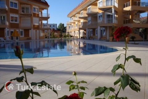 2+1 Apartment in Kemer, Turkey No. 1170 - 7