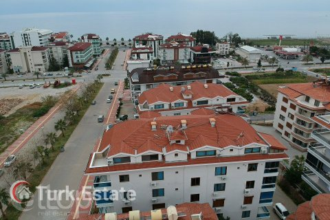 1+1 Apartment in Kestel, Turkey No. 244 - 2