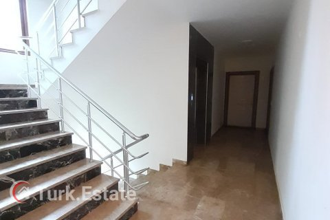 1+1 Apartment in Kestel, Turkey No. 244 - 8