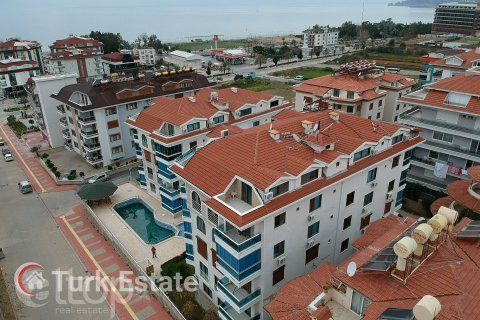 1+1 Apartment in Kestel, Turkey No. 244 - 5