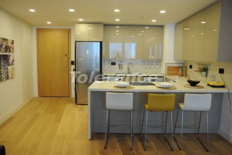 1+0 Apartment in Istanbul, Turkey No. 4671 - 8
