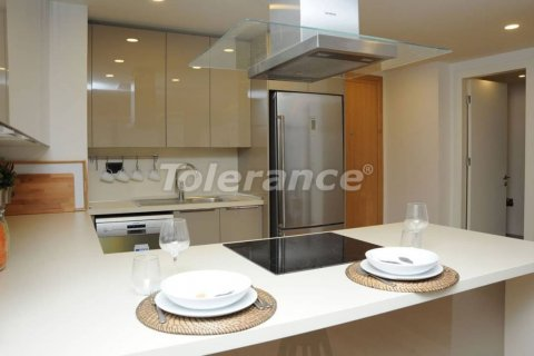 1+0 Apartment in Istanbul, Turkey No. 4671 - 9