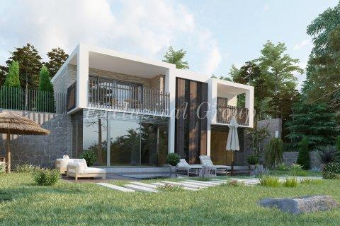 3+1 Villa in Bodrum, Turkey No. 8798 - 2