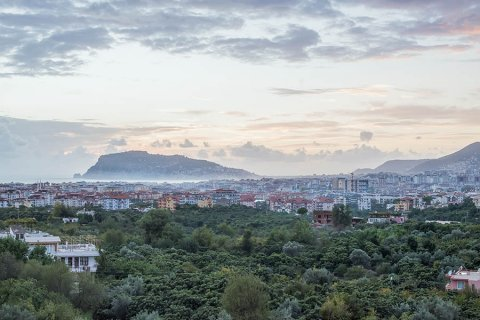 TOP 8 largest developers in Alanya in 2020