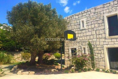 5+2 Villa in Bodrum, Turkey No. 9914 - 8