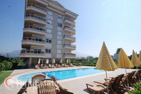 Квартира 1+1 в Кестеле, Турция №209 - 1
