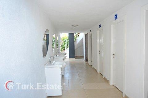 Продажа квартиры в Кестеле, Анталья, Турция 1+1, 70м2, №1912 – фото 21