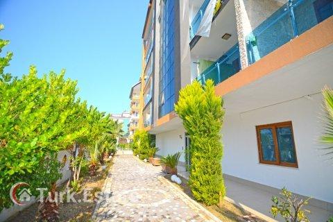 Продажа квартиры в Кестеле, Анталья, Турция 1+1, 70м2, №1913 – фото 28