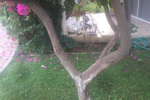 Аренда виллы в Кемере, Анталья, Турция 2+1, 50м2, №2714 – фото 16