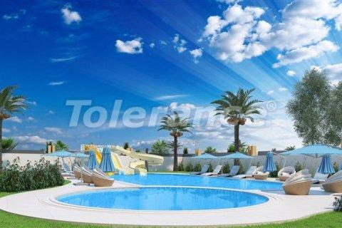 Продажа квартиры в Махмутларе, Анталья, Турция 1+1, 67м2, №3042 – фото 7