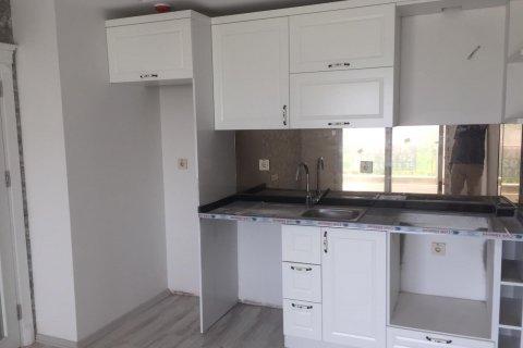 Квартира 1+1 в Тёмюк, Турция №2743 - 4