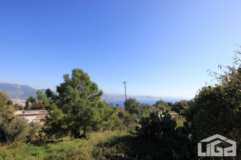 Продажа земельного участка в Аланье, Анталья, Турция, 2212м2, №3937 – фото 4