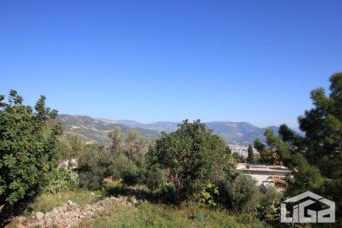 Продажа земельного участка в Аланье, Анталья, Турция, 2212м2, №3937 – фото 6