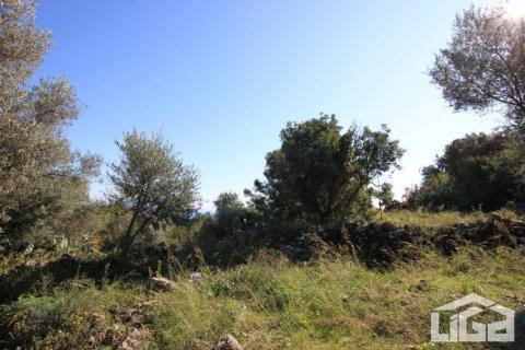 Продажа земельного участка в Аланье, Анталья, Турция, 2212м2, №3937 – фото 5