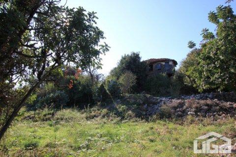 Продажа земельного участка в Аланье, Анталья, Турция, 2212м2, №3937 – фото 9