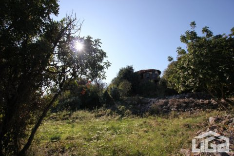 Продажа земельного участка в Аланье, Анталья, Турция, 2212м2, №3937 – фото 3