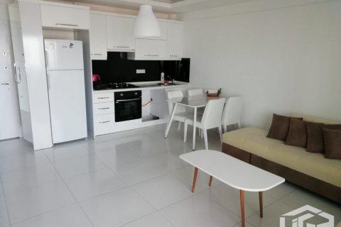 Квартира 1+1 в Аланье, Турция №4113 - 3