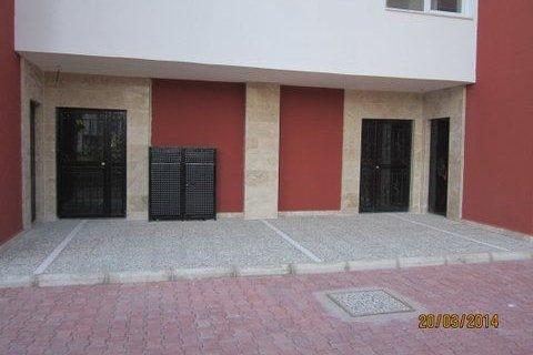Продажа коммерческой недвижимости в Муратпаше, Анталья, Турция, 600м2, №4474 – фото 16