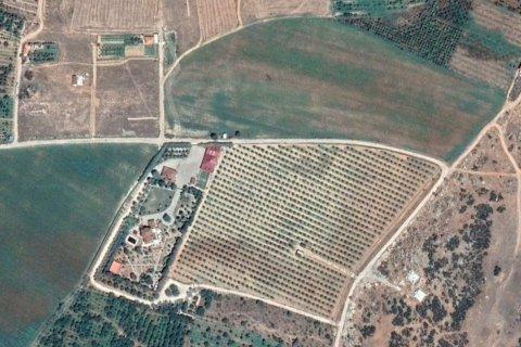 Продажа виллы в Дёшемеалты, Анталья, Турция 7+2, 450м2, №4572 – фото 15