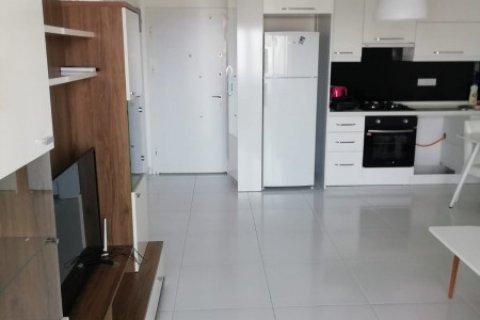 Квартира 1+1 в Аланье, Турция №4113 - 9
