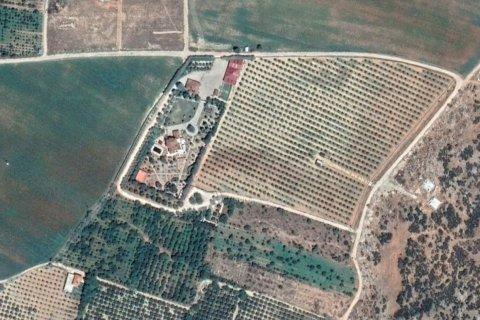 Продажа виллы в Дёшемеалты, Анталья, Турция 7+2, 450м2, №4572 – фото 14