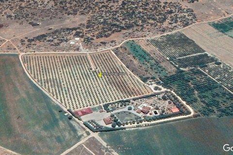 Продажа виллы в Дёшемеалты, Анталья, Турция 7+2, 450м2, №4572 – фото 17