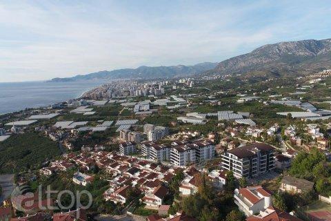 Квартира 2-х ком. в Аланье, Турция №1010 - 3