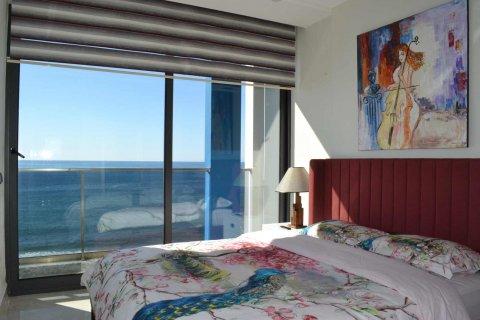 Жилой комплекс Квартира люкс на первой береговой линии! в Махмутларе, Анталья, Турция №11897 – фото 7