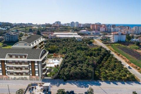 Продажа квартиры в Аланье, Анталья, Турция 1+1, 54м2, №11740 – фото 15