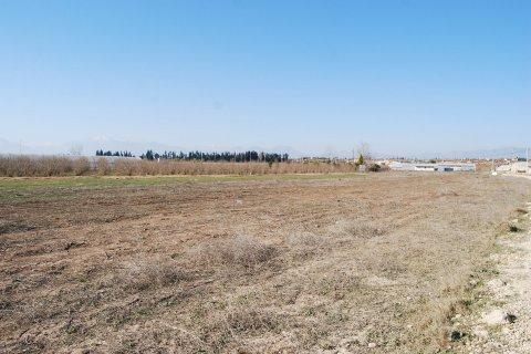 Продажа земельного участка в Аксу, Анталья, Турция, 6000м2, №11965 – фото 5