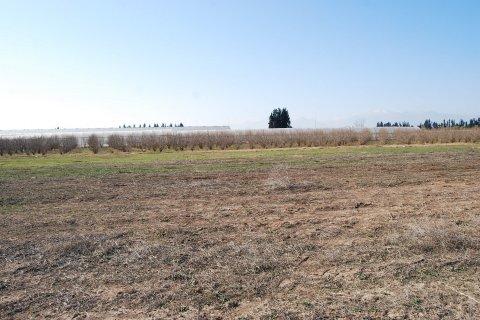 Продажа земельного участка в Аксу, Анталья, Турция, 6000м2, №11965 – фото 7