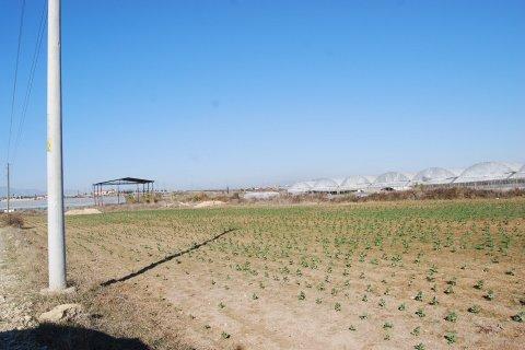 Продажа земельного участка в Аксу, Анталья, Турция, 6000м2, №11965 – фото 10