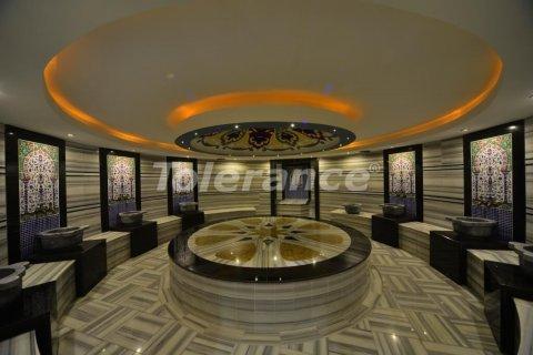 Продажа квартиры в Аланье, Анталья, Турция 1+1, №3234 – фото 14