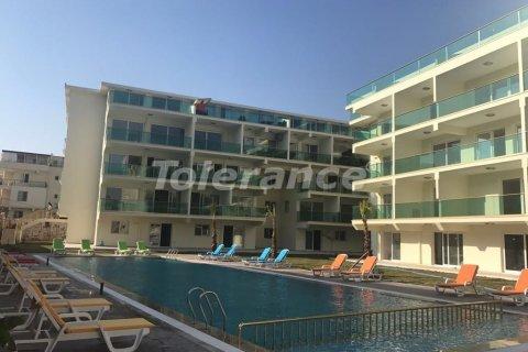 Продажа квартиры в Дидиме, Айдын, Турция 2+1, 76м2, №3022 – фото 13