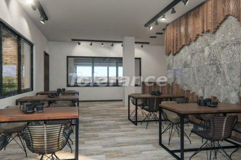 Продажа квартиры в Аланье, Анталья, Турция 1+1, №3097 – фото 13