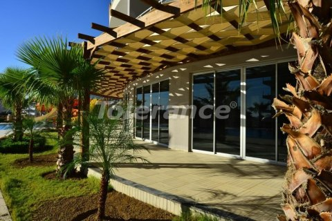 Продажа квартиры в Аланье, Анталья, Турция 1+1, №3234 – фото 10